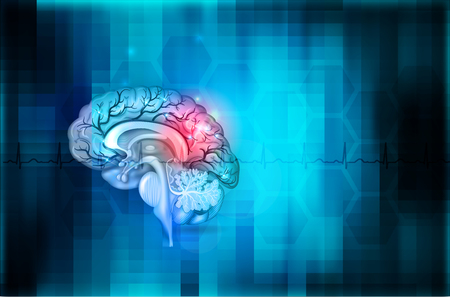 Human brain abstract blue background, beautiful colorful illustration detailed anatomy
