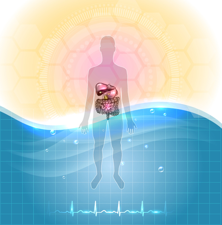 Health care poster- drinking water is healthy.  Human silhouette and gastrointestinal tract detailed anatomy, standing in the water and normal cardiogram at the bottom.