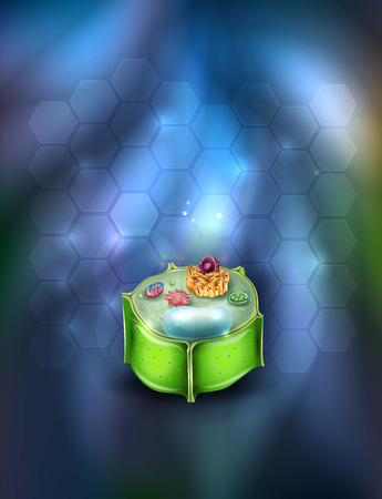 Plant Cell cross section drawing detailed colorful anatomy on an abstract glowing background. Illustration