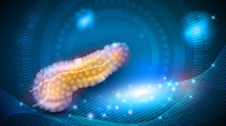Pancreas anatomy illustration, health care on a glowing background Stock Illustratie