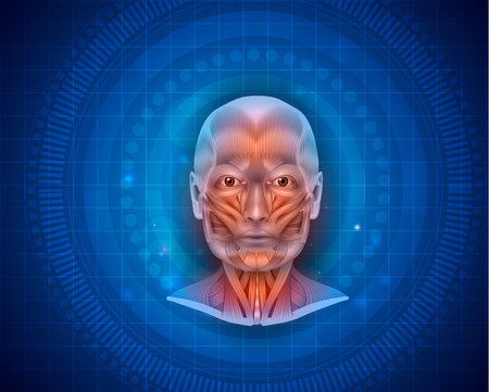 Muscles of the face and neck detailed bright anatomy on a blue background