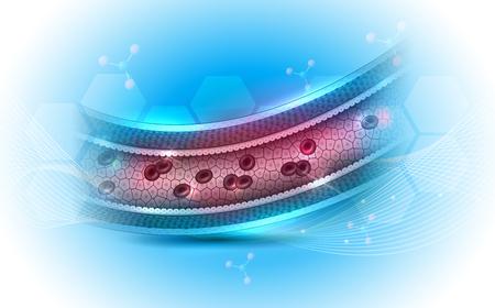 Sección transversal de la anatomía de la arteria sana y un hermoso fondo abstracto azul claro Ilustración de vector
