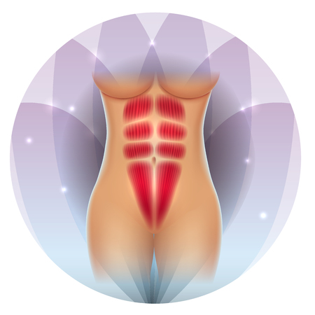 Female abdominal muscles beautiful fit body on a round flower transparent petals background Illustration
