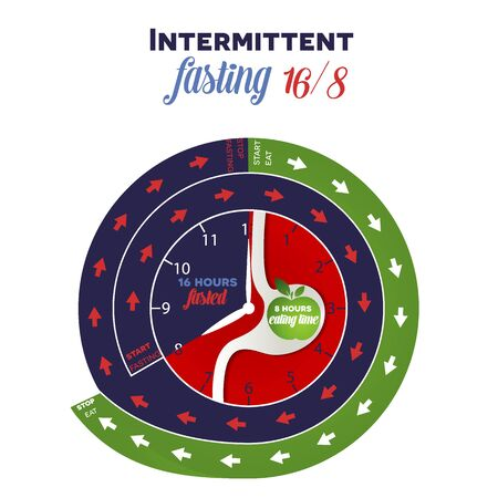 Intermittent fasting diet clock 16/8 for weight loss and health, detailed design showing when to start and when stop fasting and eating, inside the clock are stomach and apple as eating symbols 版權商用圖片 - 139602181