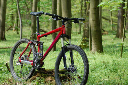 mountainbike: classic mountainbike which is often used in sports.