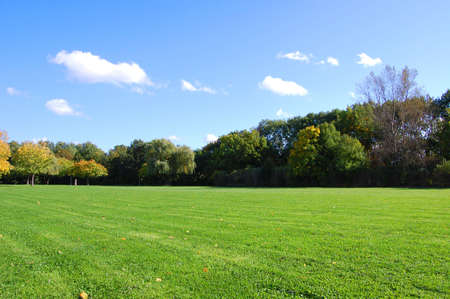 green trees of a park at summer or autumn under blue sky Stock Photo - 3670934