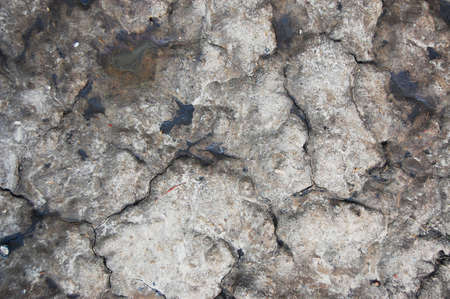 texture and pattern of old dirty soil photo