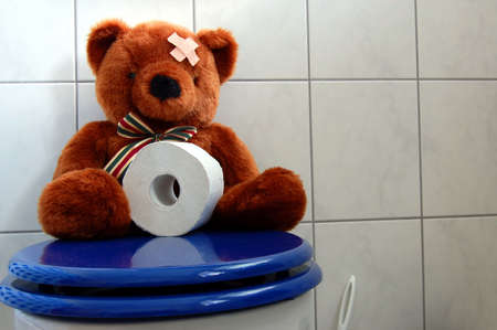 a toilet stool: toy teddy bear with paper in the bathroom on toilet