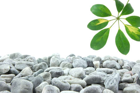 stones and leaves with copy space for text message photo
