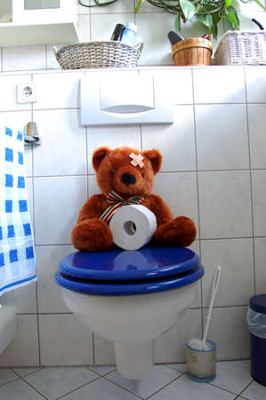 poo: toy teddy bear with paper in the bathroom on toilet