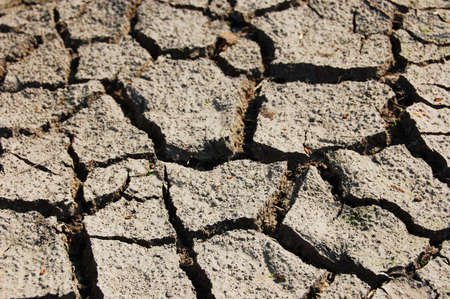 dry and cracked soil in hot summer on a farm photo