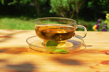 cup of tea in the garden at summer Stock Photo - 5090414