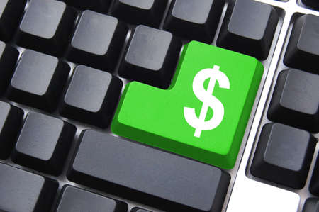 earn money online: internet or computer business with money button on keyboard