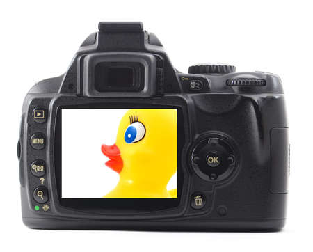 toy rubber duck iand digital camera isolated on white background                                     photo