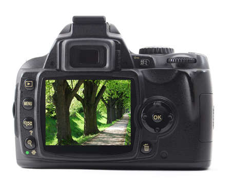 digicam: nature image on digicam showing photography concept