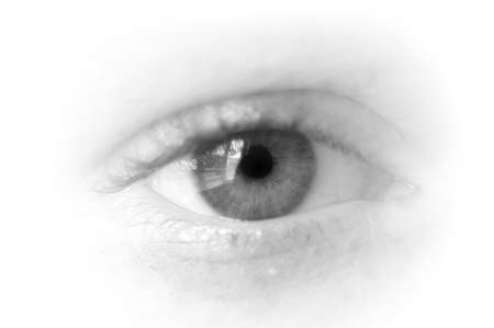 eye isolated on white background is watching you                                     photo