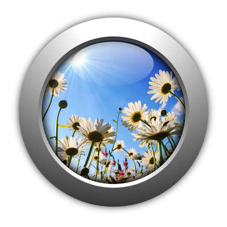 happy an lucky flower for internet page showing spring concept Stock Photo - 5737948