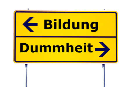 stupidity: education and stupidity concept with yellow road sign