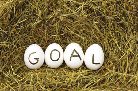 achivement: goal or business achivement concept with eggs on straw