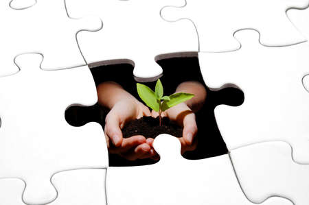 puzzle plant and hands showing concept for growth                                      photo