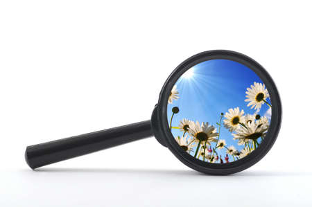 shaddow: finde a flower or nature with a magnifying glass