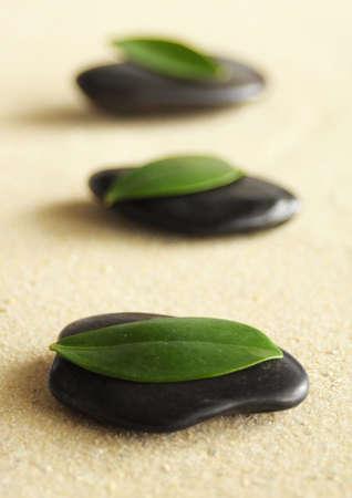 japanese zen garden showing wellness or spa concept Stock Photo - 6565557