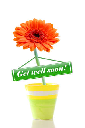 well: get well soon greeting card with flower isolated on white background