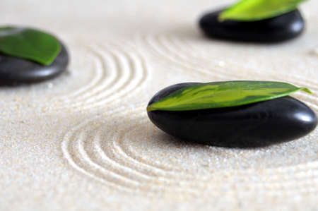 zen still life with sand and green leaf showing wellness concept photo