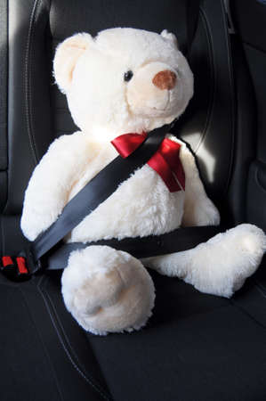 safety first concept with teddy bear in car  photo