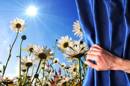 happieness: view to summer flowers behind a blue curtain showing happiness