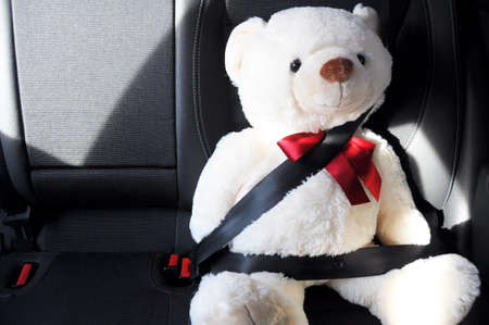 fasten your seat belt concept with teddy bear showing car safety Stock Photo - 6996068