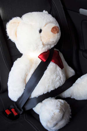 fasten your seat belt concept with teddy bear showing car safety photo