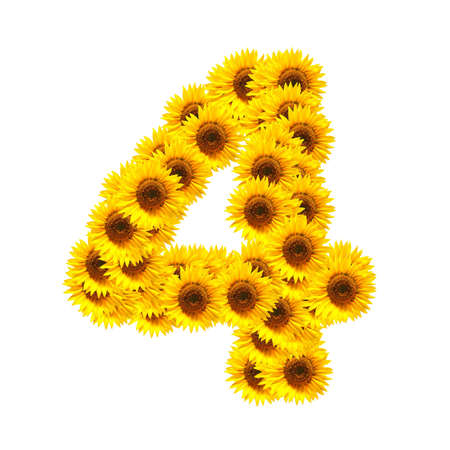 flower alphabet and numbers with sunflowers isolated on white background Stock Photo - 7055658