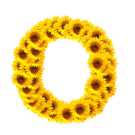 flower alphabet and numbers with sunflowers isolated on white background photo