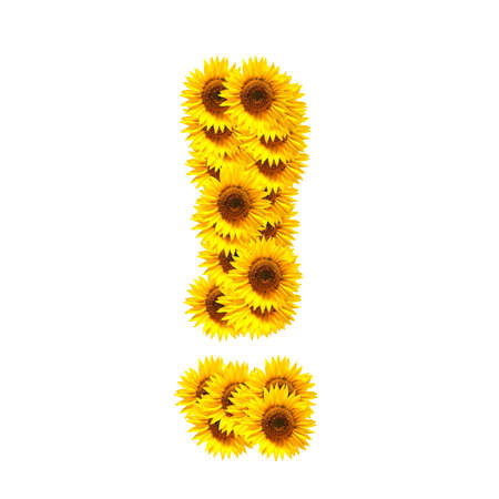 flower alphabet and numbers with sunflowers isolated on white background Stock Photo - 7055570