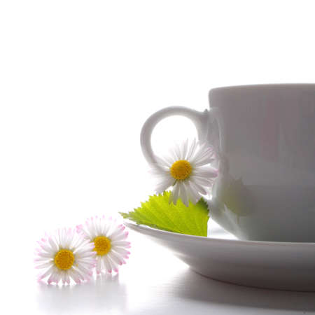 chinese teapot: cup of tea or coffee with leaf and white copyspace