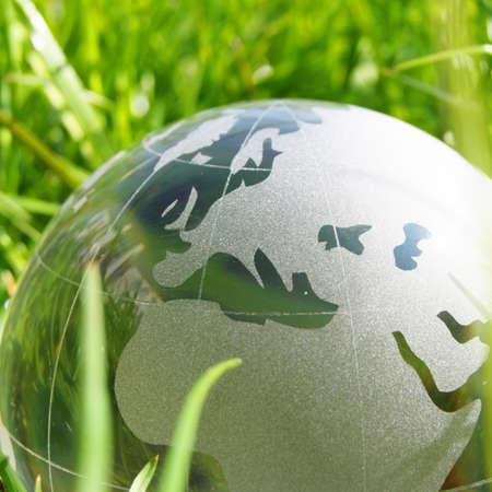 Öko Ökologie oder Umweltkonzepts mit grünem Gras Globus und Exemplar  Standard-Bild