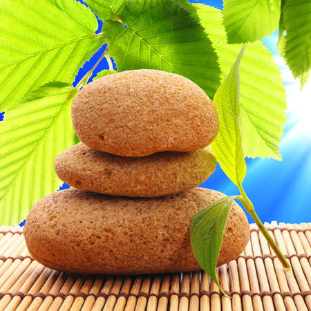 zen stone and green leaf showing spa or wellness concept Stock Photo - 7322297