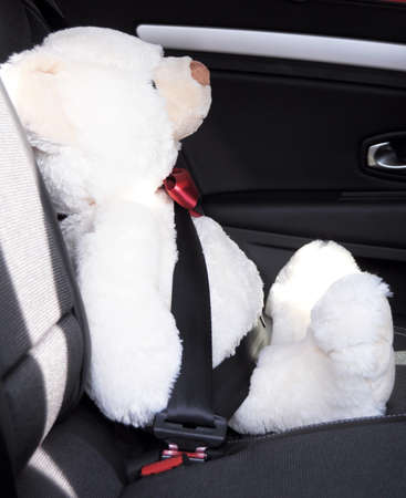 shunt: fasten your seat belt concept with teddy bear showing car safety