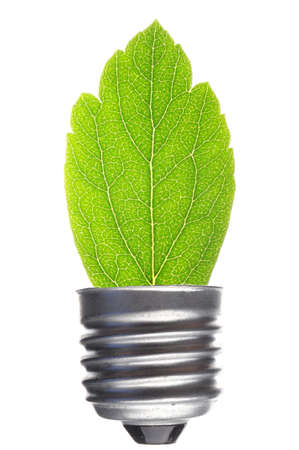 renewabel: green leaf and bulb isolated on white showing ecological power concept