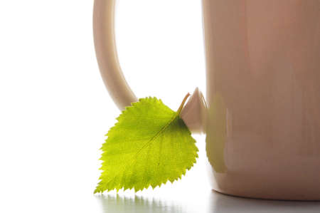 cup of tea or coffee with leaf and white copyspace Stock Photo - 7522298