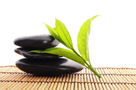 zen stones with green leaves and copyspace showing wellness Stock Photo - 7522302