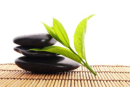 zen garden: zen stones with green leaves and copyspace showing wellness