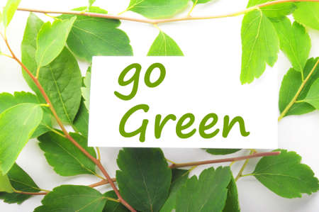 go green concept with word on nature still life photo