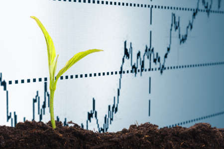 growth in economy: growth or growing economy concept with business chart and young plant