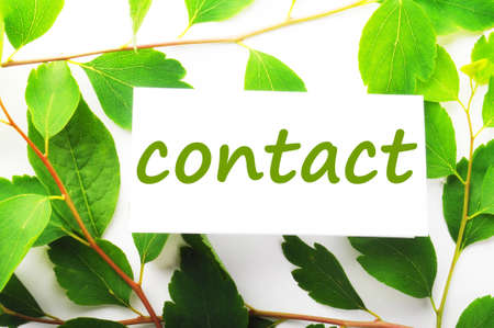 contact us concept with word on nature still life Stock Photo - 7724102