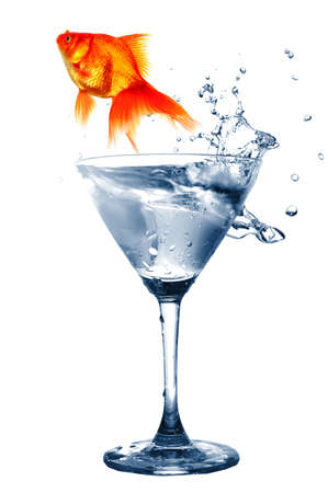 goldfish in drink glass showing jail prison free or freedom concept Stock Photo - 7794903