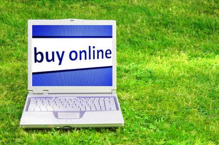 e auction: buy online or ecommerce concept with laptop in green grass Stock Photo