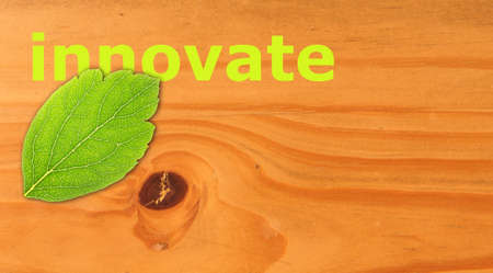 innovate concept with word on nature still life Stock Photo - 7820879