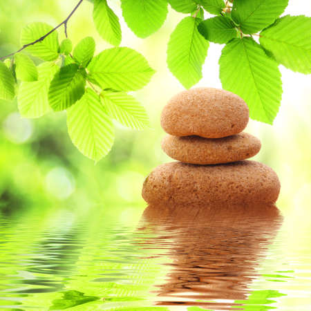 zen like: zen stones and green summer leaves with water reflection